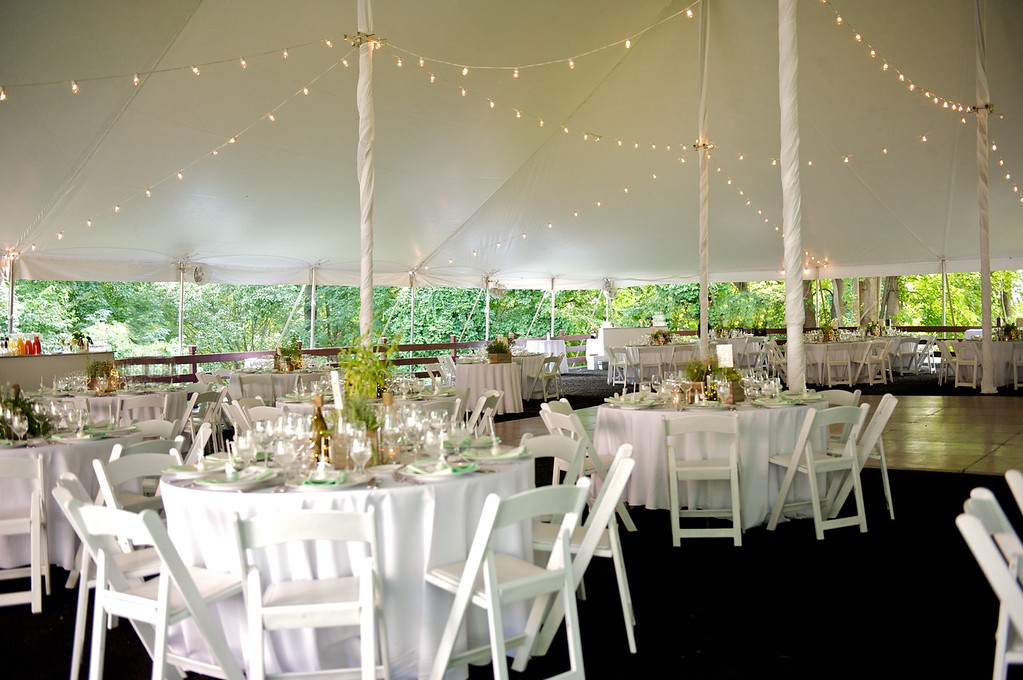 Elegant 60x90 wedding for 160