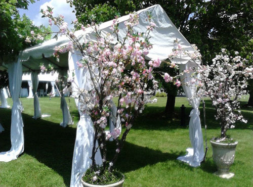Floral Decorated Entrance Marquee