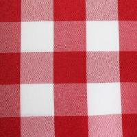 Rental store for RED CHECK TABLE LINEN in Hillsdale NJ