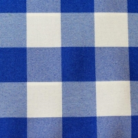 Rental store for BLUE CHECK TABLE LINEN in Hillsdale NJ