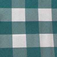 Rental store for TEAL CHECK TABLE LINEN in Hillsdale NJ